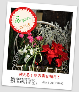 DSC_0096-1.JPG